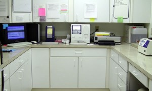 Blackwater Veterinary Services In-House Lab.